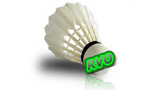 Logo 160 0706 BadmintonRVO